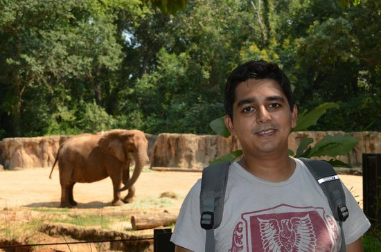 Riverbanks Zoo and Botanical Garden: Me in front of African elephant