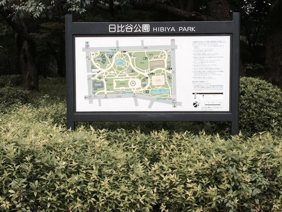 The Peninsula Tokyo: 日比谷公園がすぐ前にあります。ロケーションは良いです。