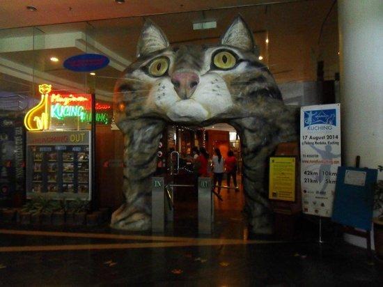 Cat Museum : entrance