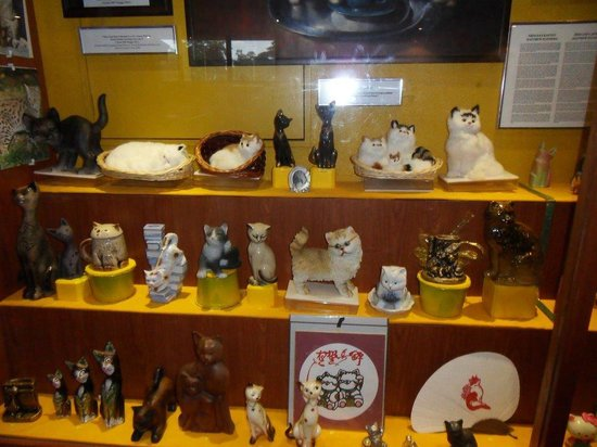 Cat Museum : Some of the display