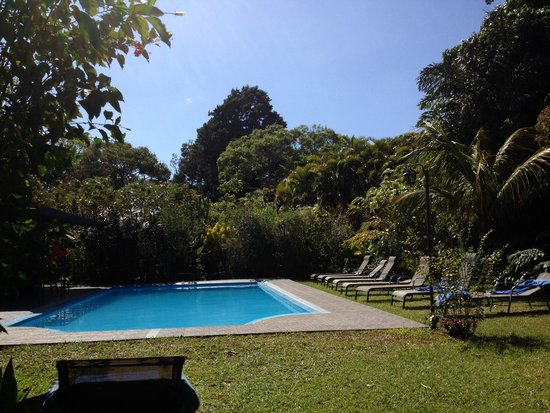 Pura Vida Retreat & Spa: Frequently private pool