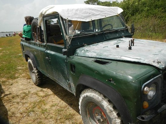 Crooked Tree Wildlife Sanctuary: old land rover defender