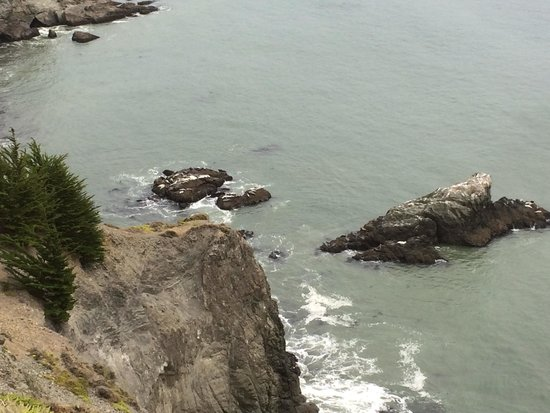 Marin Headlands : look for Sea Lions in water and on rocks.