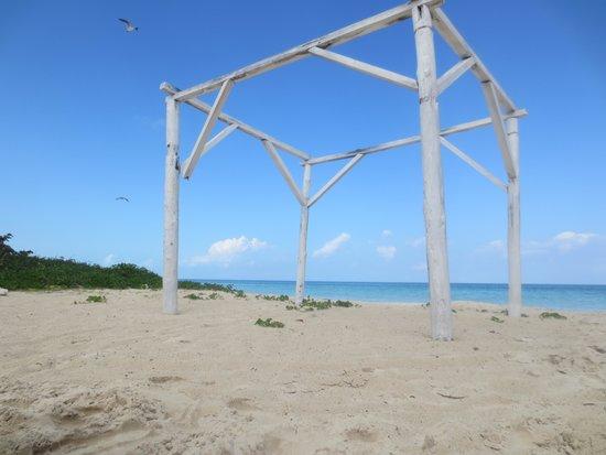 Hotel Playa Coco : la playa