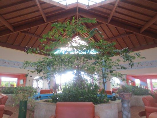 Hotel Playa Coco : le loby