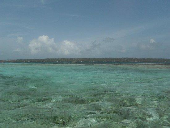 Johnny Cay: vista del mar desde la isla