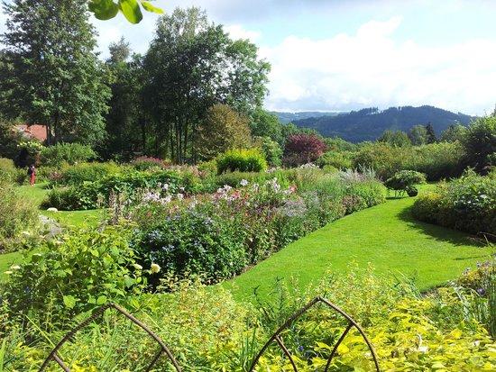 jardin3 picture of jardin de berchigranges gerardmer. Black Bedroom Furniture Sets. Home Design Ideas