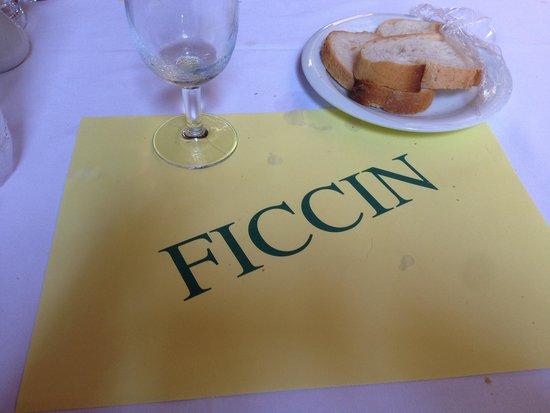 Fıccın: Ficcin's logo