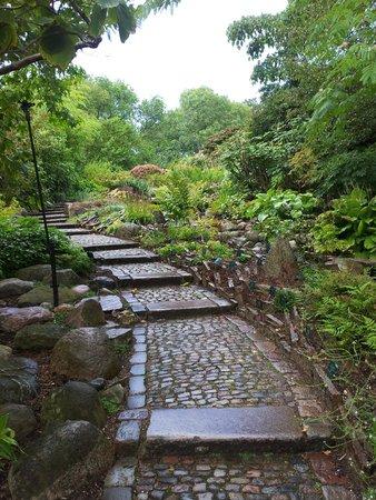Botanical Gardens (Botanisk Have) : un tranquillo vialetto