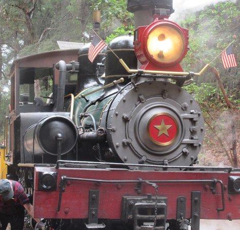 Roaring Camp & Big Trees Narrow-Gauge Railroad: Engine - Narrow Gauge Railroad, Roaring Camp, Felton, Ca