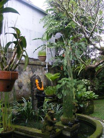 Lumbung Sari Cottages : Il bel giardino curato