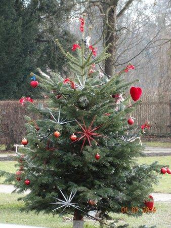 Schlosscafe im Palmenhaus: Рождество