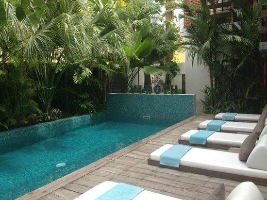 Viroth's Villa : Pool