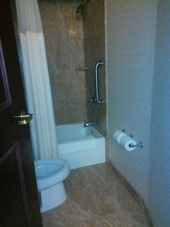 SpringHill Suites Tampa Westshore Airport: bathroom