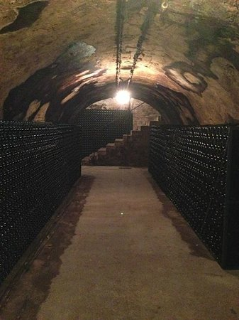 Hotel Castel Jeanson : Champagne cellars that belong to the hotel
