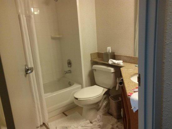 Fairfield Inn Las Vegas Airport: bathroom