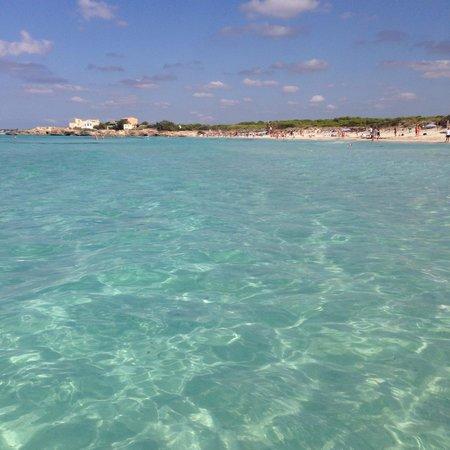 Playa de Es Trenc: Bellissima