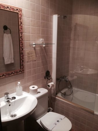 Hotel Don Carlos Caceres: Adequate en suite.