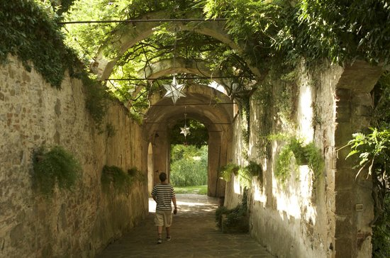 Torre Di Bellosguardo : path through garden