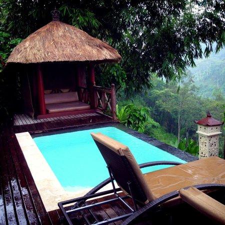 Kupu Kupu Barong Villas and Tree Spa : private pool