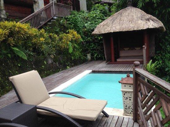 Kupu Kupu Barong Villas and Tree Spa : private pool 2
