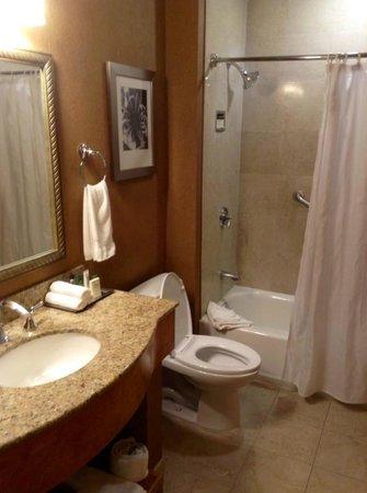 Hilton Boston Downtown / Faneuil Hall: Nice bathroom
