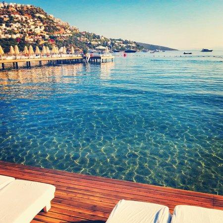 Voyage Turkbuku: Deniz