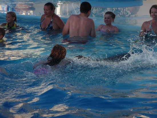 Sharm Vacations Excursion - Day Tours : Hitching a ride