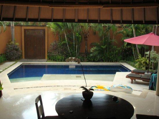 The Kunja Villas & Spa: Villa Pool