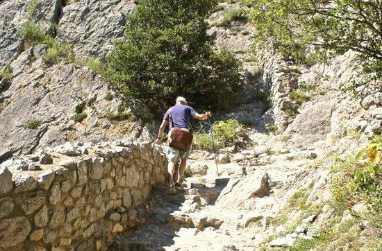 Château de Puilaurens : Climbing up