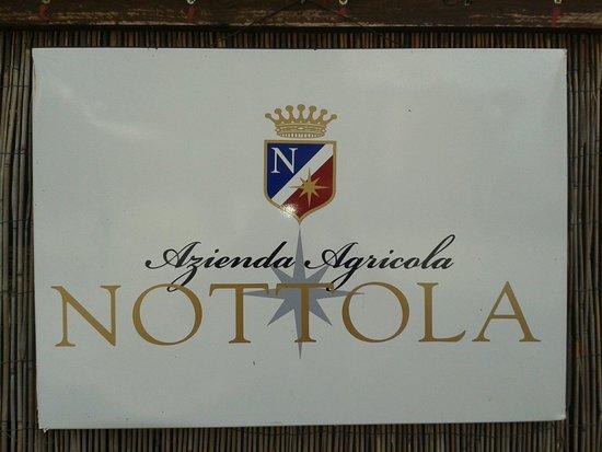 Villa Nottola: Logo