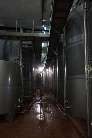 Santo Winery: Inside the winery