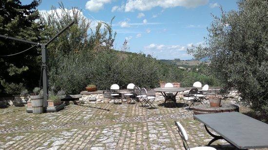 Giardino foto di il giardino degli ulivi castelraimondo tripadvisor - Il giardino degli etruschi ...