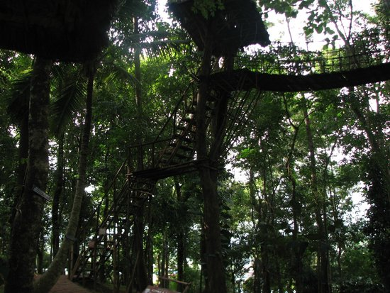 Greenwoods Resort: tree house inside resot