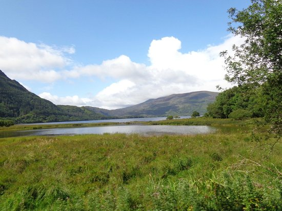 Muckross House, Gardens & Traditional Farms: Lake of Muckross Gardens