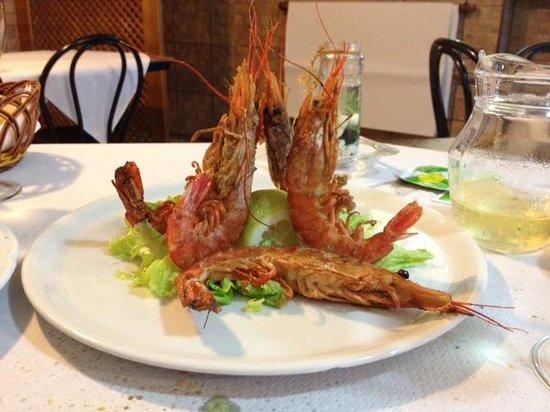 Delicias del Mar: Scampi
