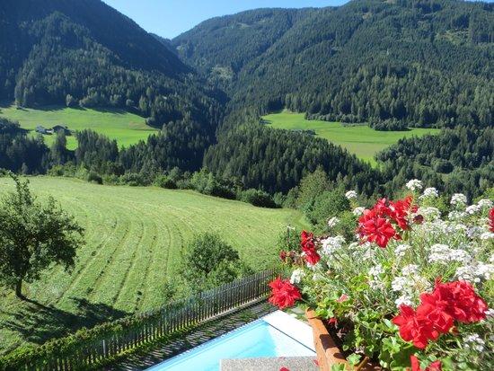 Hotel Vajolet : il panorama dalla piscina