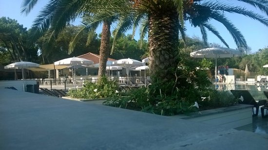 Donoratico, Italy: Zona Bar/Piscina