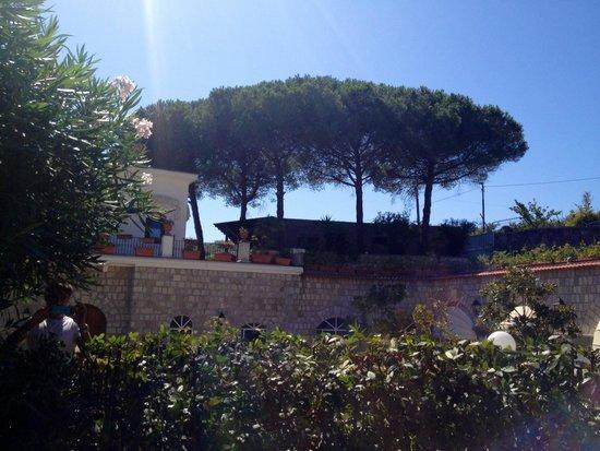 Villa Tara: Giardino
