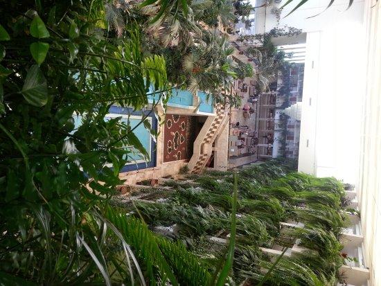 Spring Hotel Vulcano: hotel's botanical garden