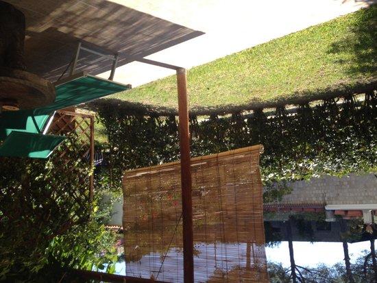 Villa Tara: Giardino della ns stanza