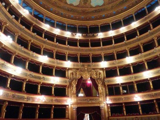 Teatro Massimo: Il teatro