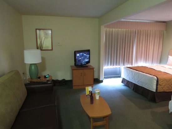 Extended Stay America - Houston - Med. Ctr. - NRG Park - Kirby: Spacious Room