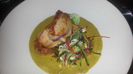 Vivo Palm Cove: mahi mahi panfried fish!