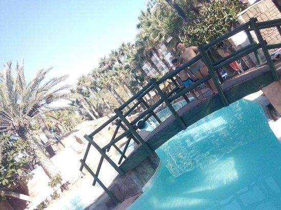 Playalinda Hotel: En las piscinas