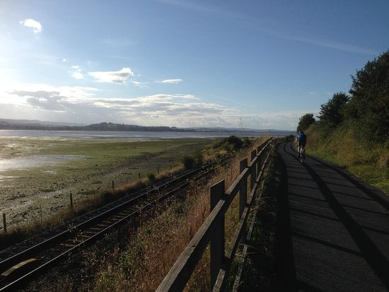 Saddles & Paddles Exeter Ltd: View from the Exe Estuary Trail (between Exmouth & Lympstone)