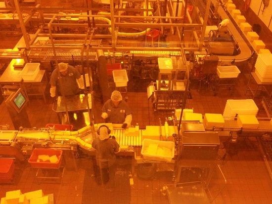 Tillamook Cheese Factory: fábrica