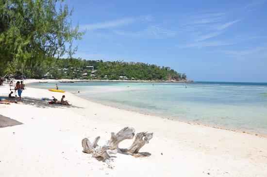 Green Papaya Resort: Haad Salad Beach