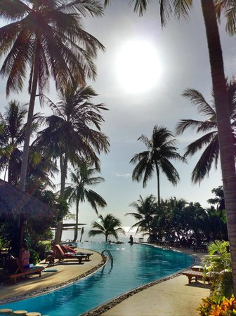 Green Papaya Resort: Afternoon sun