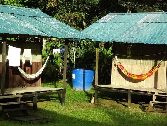 Shiripuno Lodge: Hammocks on the terrace